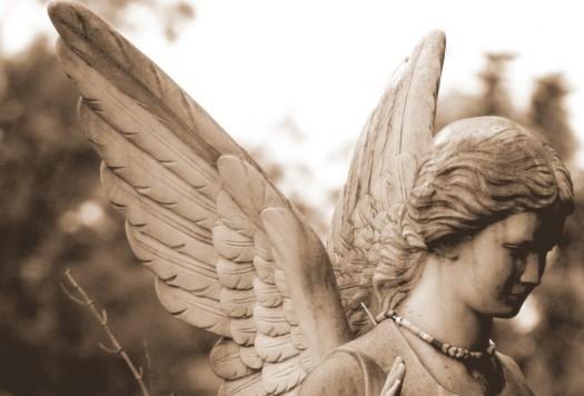 cropped-angel-2.jpg